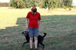 Sitz, Platz & Co in Perfektion und auf Distanz • Hundeschule Grosse Freiheit